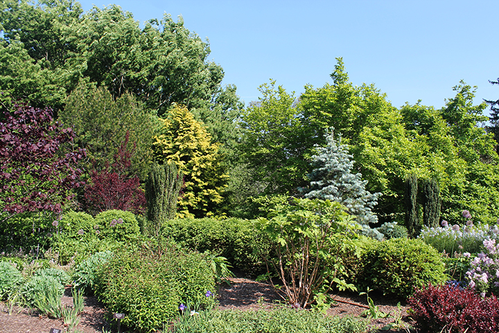 Photograph of the Four Seasons Garden Walk by Courtney Pure