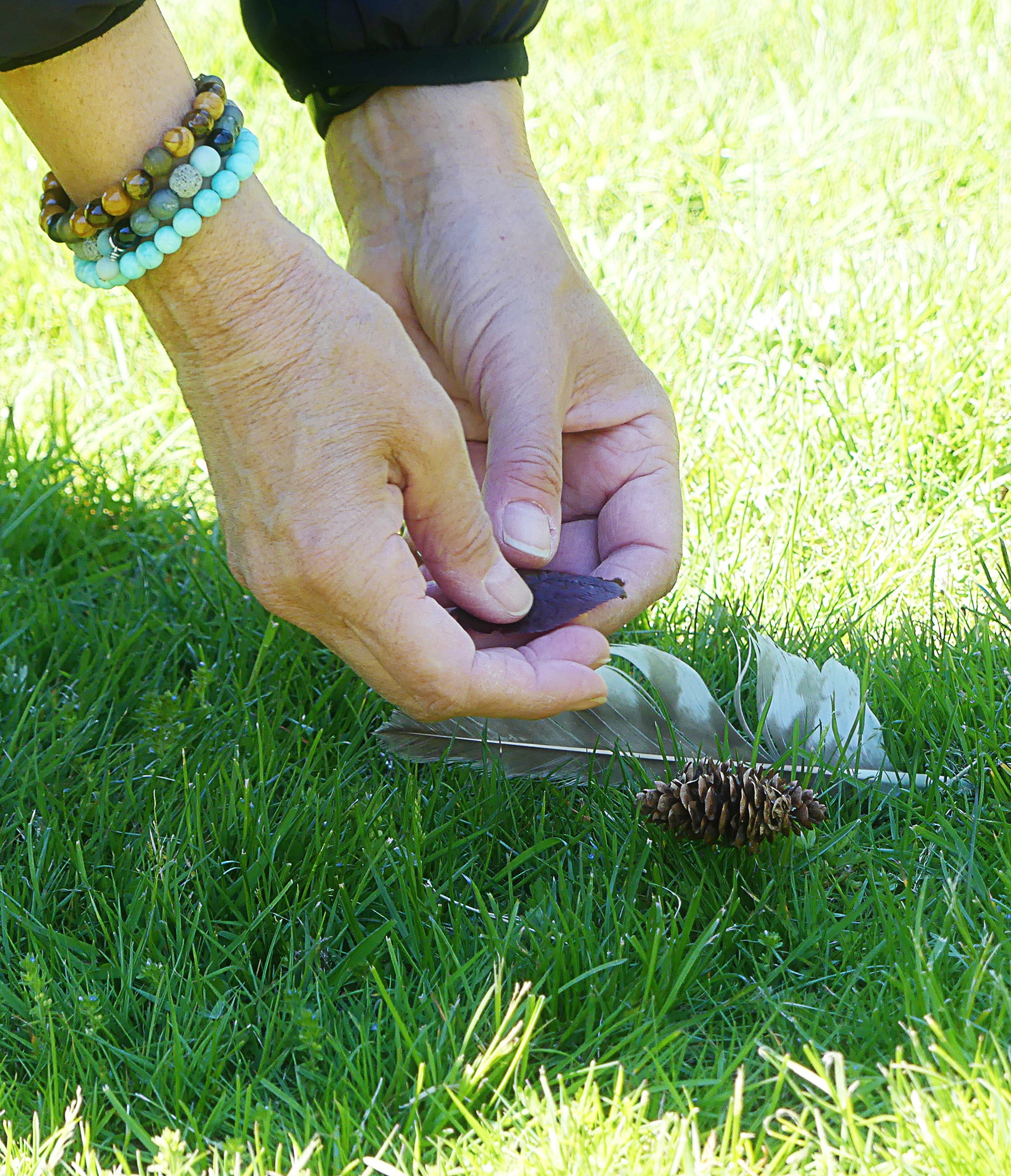 Close up image of hands touching random natural items like rocks and a pine cone.